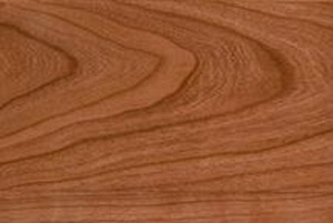cherry wood sample